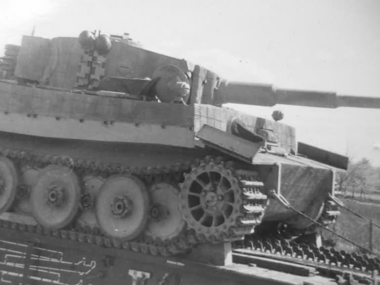 Tiger_rail.jpg