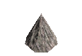 A14trunkPineTip.png