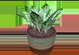 treePlant02.png