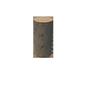 Pillar 50.png