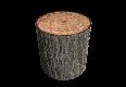 woodLogPillar100.png