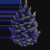 BlueSpruceSeedA18.png