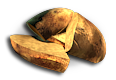 PotatoSeed.png