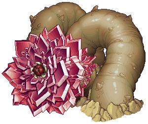 鍛練所の砂蚯蚓