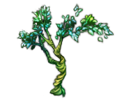 世界樹の苗