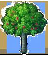 黄金のリンゴの樹