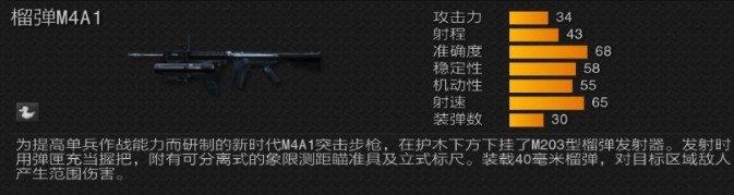 m4a1m203.jpg
