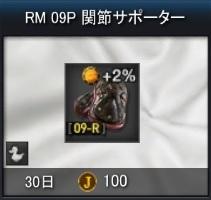 RM_09P.jpg