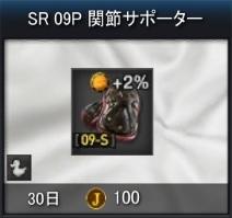 SR_09P.jpg