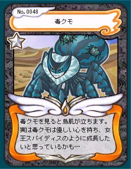 毒クモ.JPG