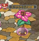 スプラウトの妖精.jpg