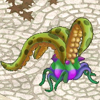 カラフルシダ.png