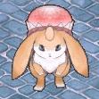柑橘系大耳ウサギ.png