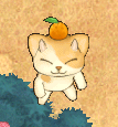 オレンジニャンス.png