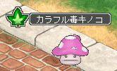 カラフル毒キノコ.jpg