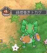 緑襟巻きトカゲ.jpg