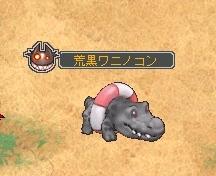 荒黒ワニノコン.jpg