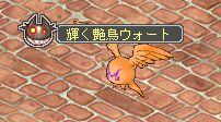 輝く艶鳥ウォート.jpg