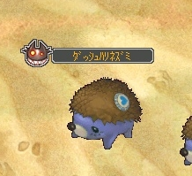 ダッシュハリネズミ.jpg