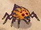 砂漠の毒クモ.jpg