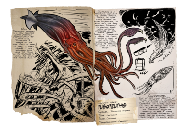 388px-Dossier_Tusoteuthis.png