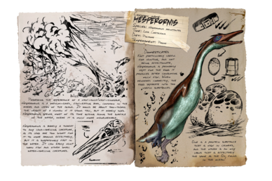 388px-Dossier_Hesperornis.png