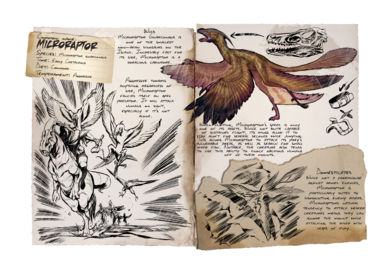388px-Dossier_Microraptor.png