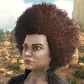 120px-HairFemaleAfro100.png