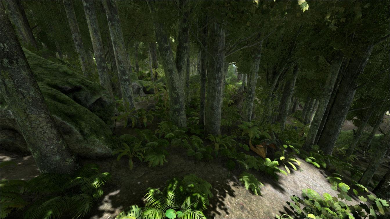 forests_result.jpg