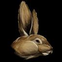 128px-Procoptodon_Bunny_Costume.png