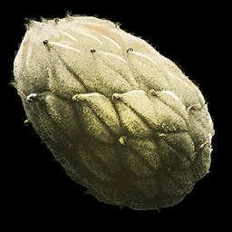 Plant_Species_Z_Seed_(Aberration).png
