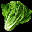 128px-Lettuce_(Primitive_Plus).png