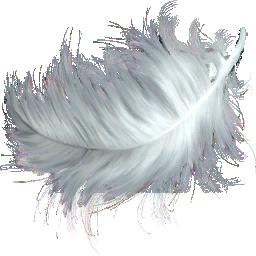 Feathers_(Primitive_Plus).png
