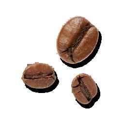 Fresh_Coffee_Fruit_(Primitive_Plus).png