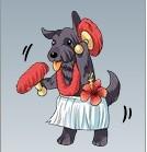 フラダンスの犬.jpg