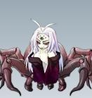 女郎蜘蛛.png