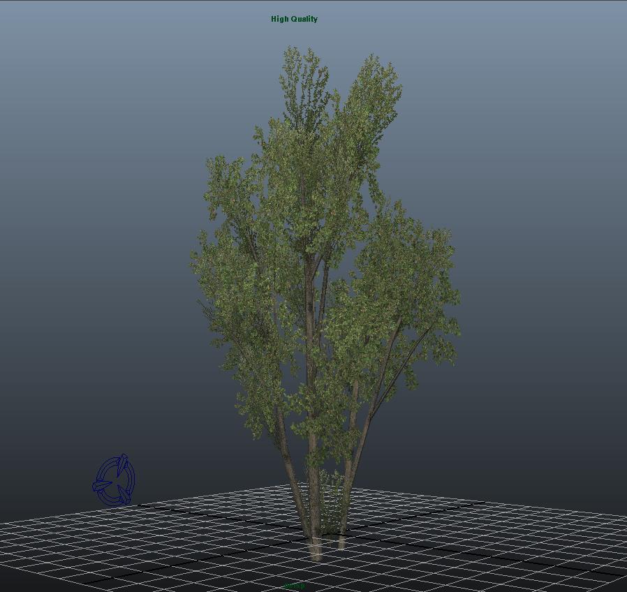 SCS-20170712_strom_maya2.jpg