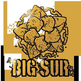 Operation Big Sur-ATS