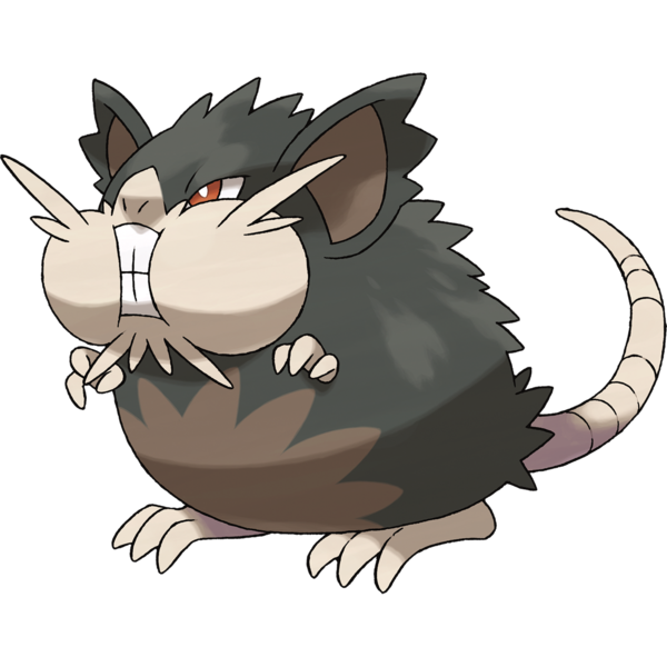 600px-020Raticate-Alola.png