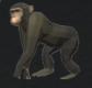 猿.png