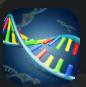 DNA_Rep.PNG