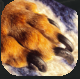 NRClaws.PNG