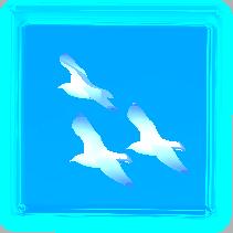 鳥ガラス.PNG