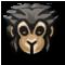 Monkey Skin Mask.png