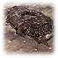 Trench66.png
