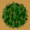 Coniferous Forest.png