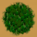 Heavy Coniferous Forest.png