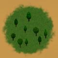 Light Coniferous Forest.png