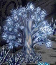 氷の木.jpg