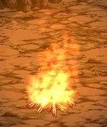 雪山-焚き木2.jpg